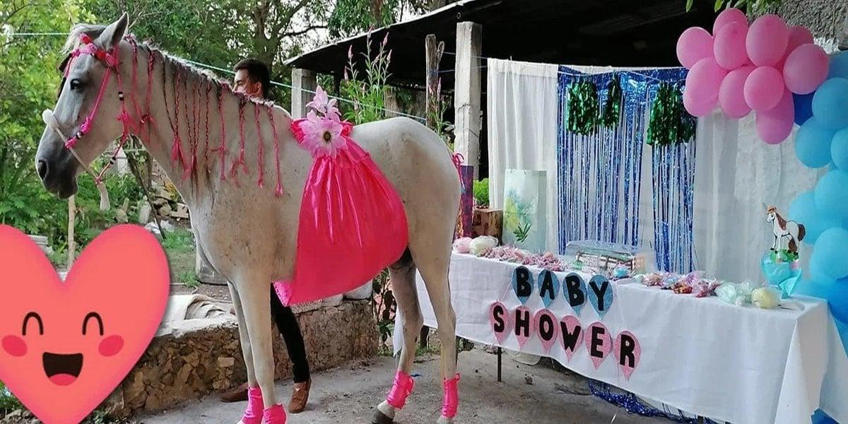 Familia realiza baby shower a su yegua 'Camila' en Yucatán e imágenes se viralizan
