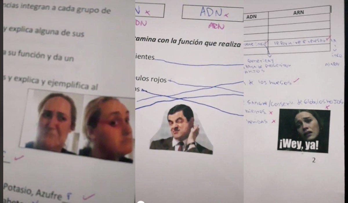 Maestra que califica con memes se hace viral en redes